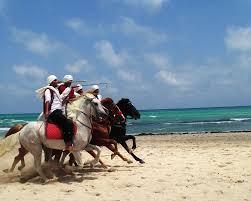 que faire en tunisie